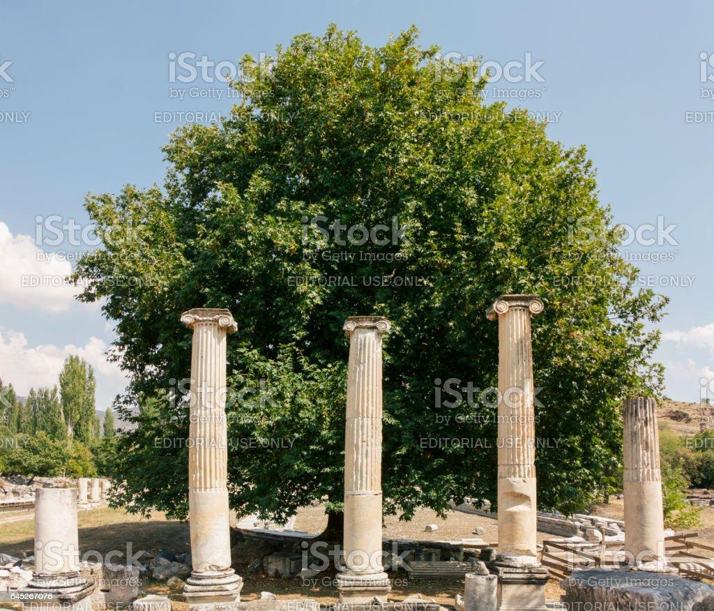 Ruins of Aphrodisias stock photo
