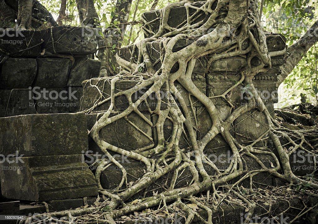 Ruins of Beng Mealea, Angkor, Cambodia royalty-free stock photo