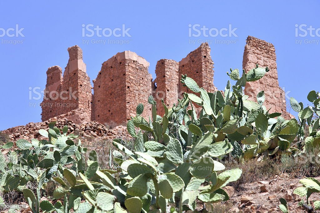 Ruins of kasbah in Morocco and opuntia cacti royalty-free stock photo