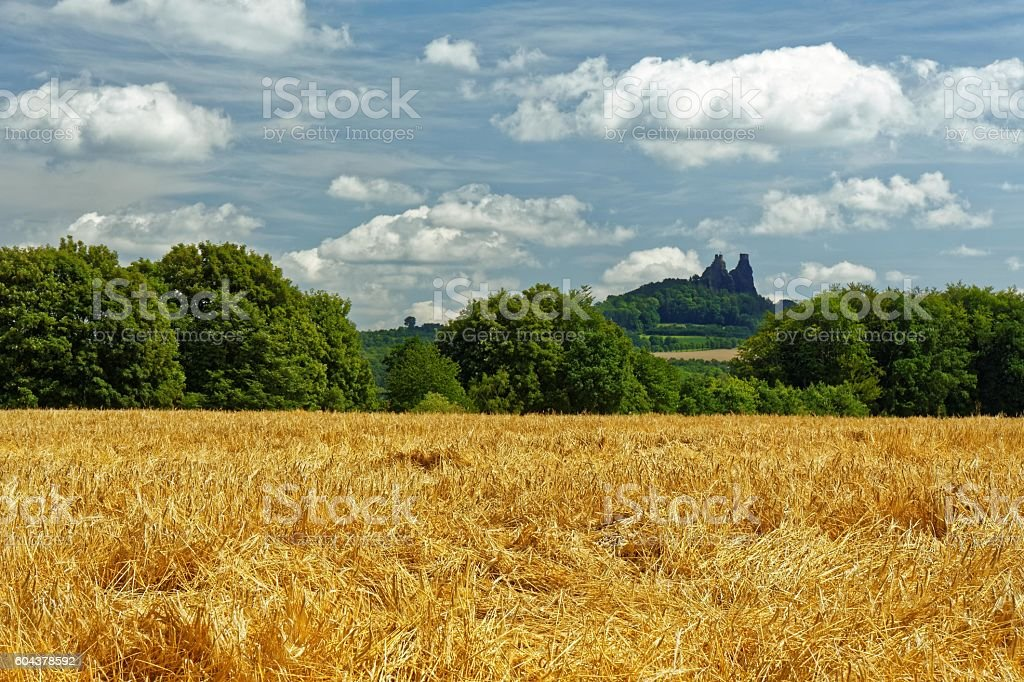 Ruins of medieval gothic castle Trosky stock photo