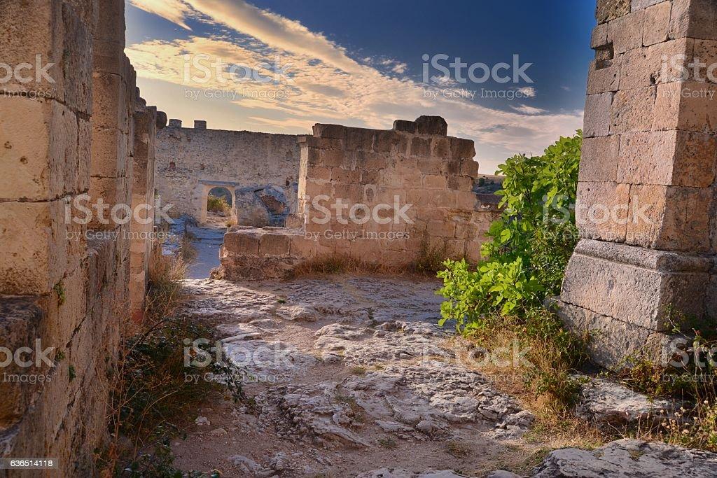 ruins of millenary monastery of San Frutos - foto de stock