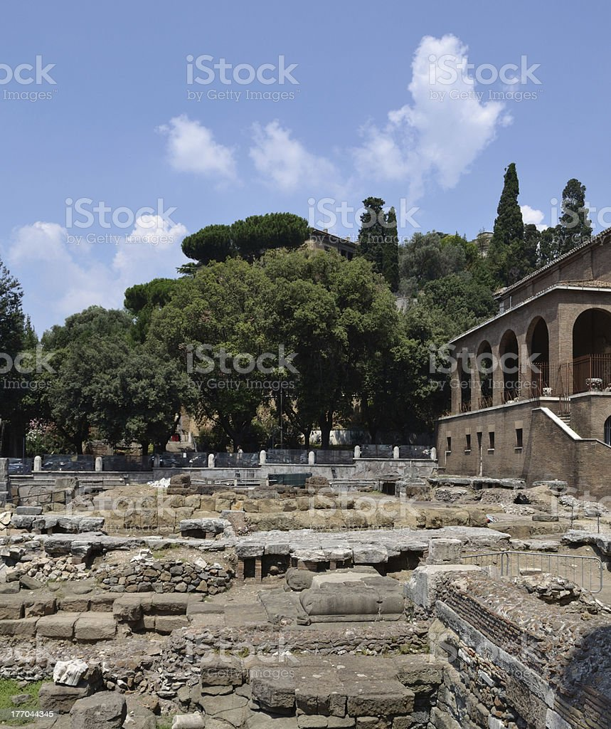 Ruins of old Rome, Italy royalty-free stock photo