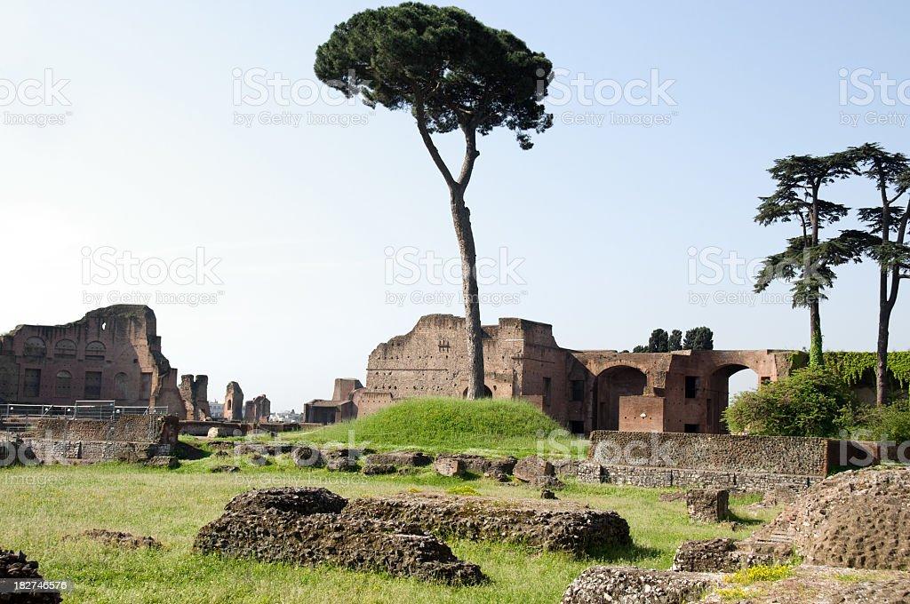 Ruins of Palantine Hills, Rome, Italy royalty-free stock photo