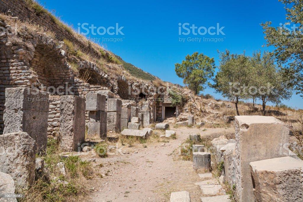 Ruins of the antique Ephesus. Selcuk in Izmir Province, Turkey. stock photo