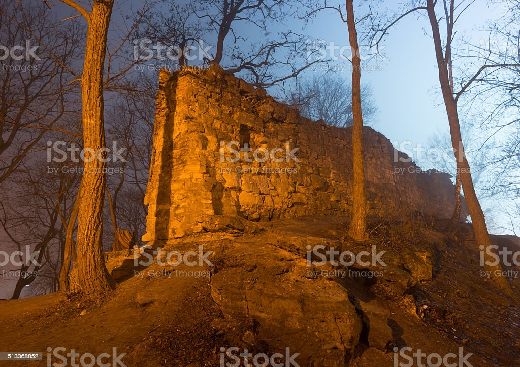 Ruins of the castle in foggy night forest stock photo