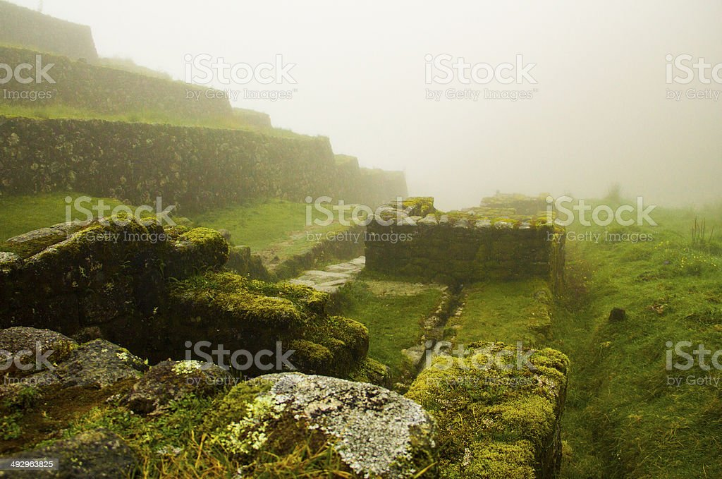 Ruins of the Incan Jungle stock photo