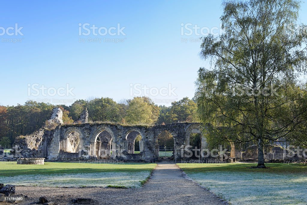 Ruins of Vauclair abbey stock photo
