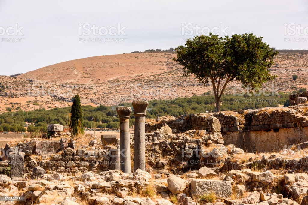 Ruins of Volubilis, an excavated Berber and Roman city in Morocco, ancient capital of the kingdom of Mauretania. UNESCO World Heritage stock photo