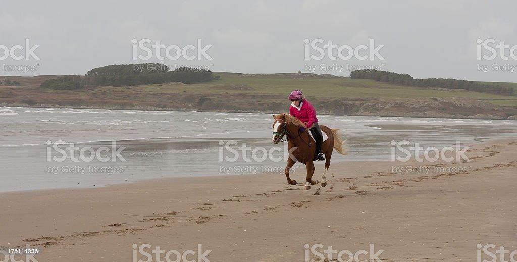 Run like the wind! royalty-free stock photo