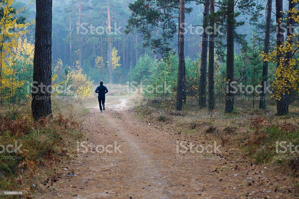 runner in the forest stock photo
