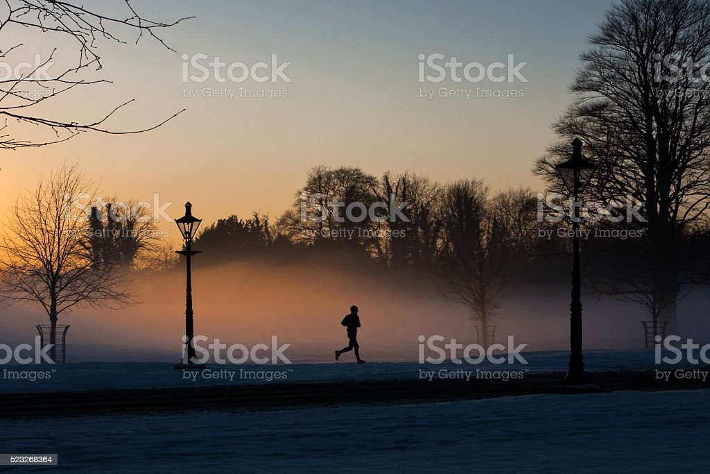 Runner in the misty Phoenix park. stock photo
