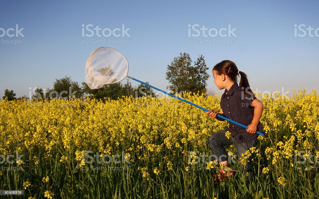 Running after butterflies royalty-free stock photo
