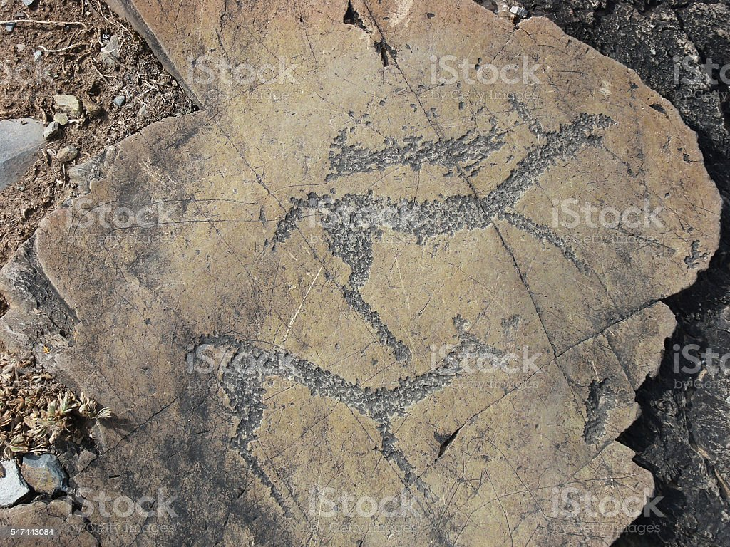 Running animals petroglyphs carved in rocks stock photo