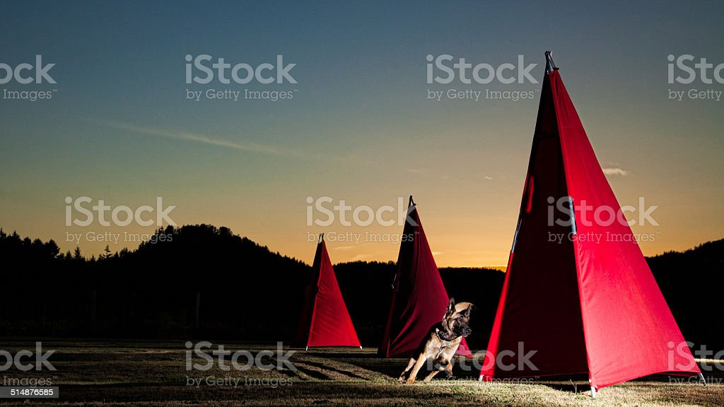 Running Blinds stock photo