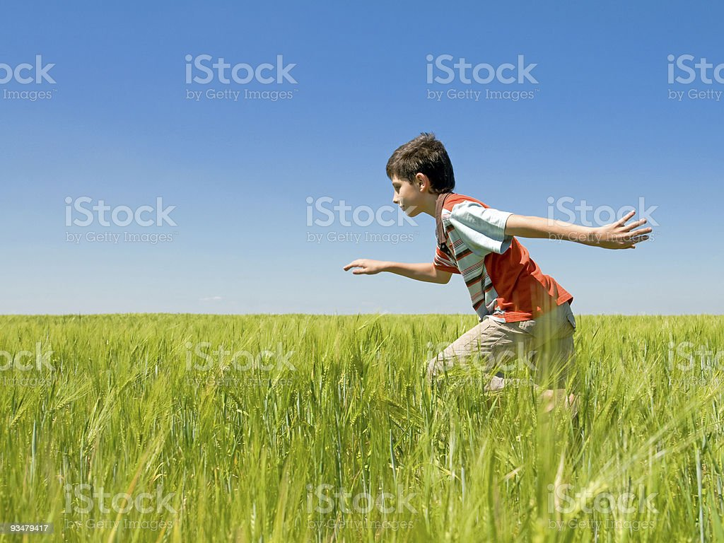 running boy in the field royalty-free stock photo