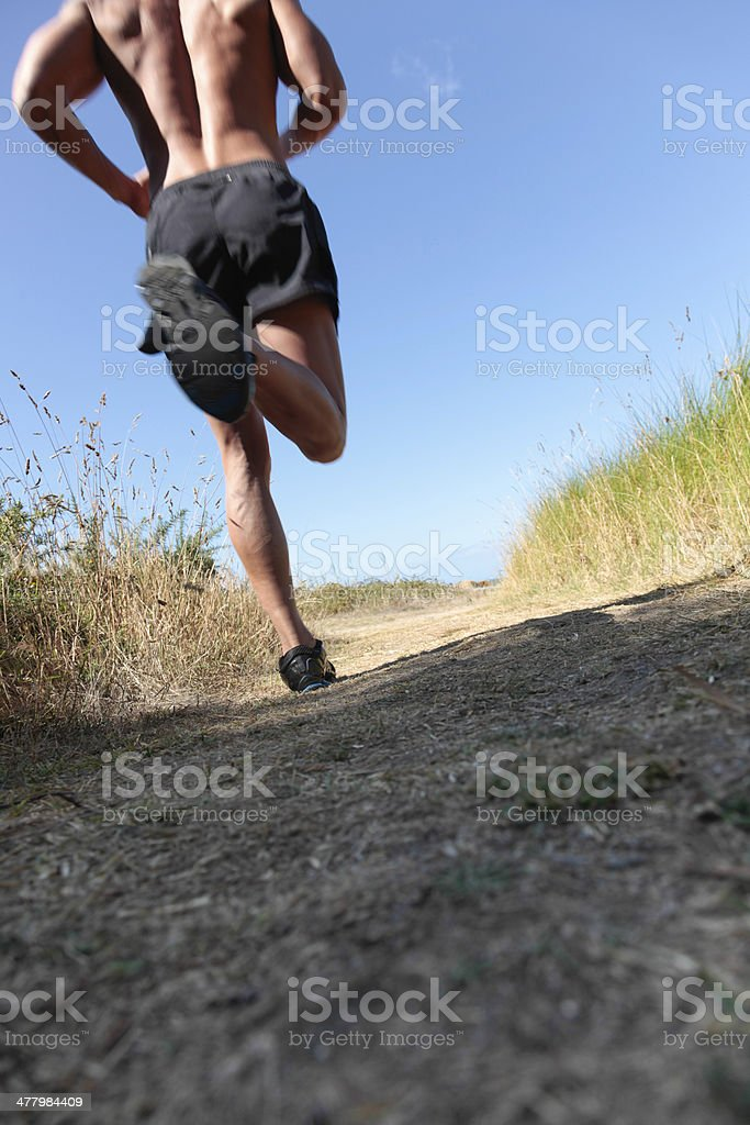 Running fast cross country royalty-free stock photo