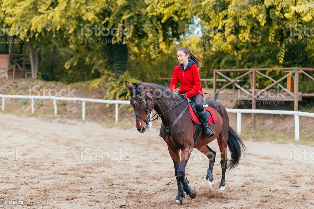 Running horse with female rider on dressage stock photo