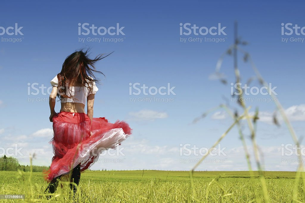 Running in a meadow stock photo