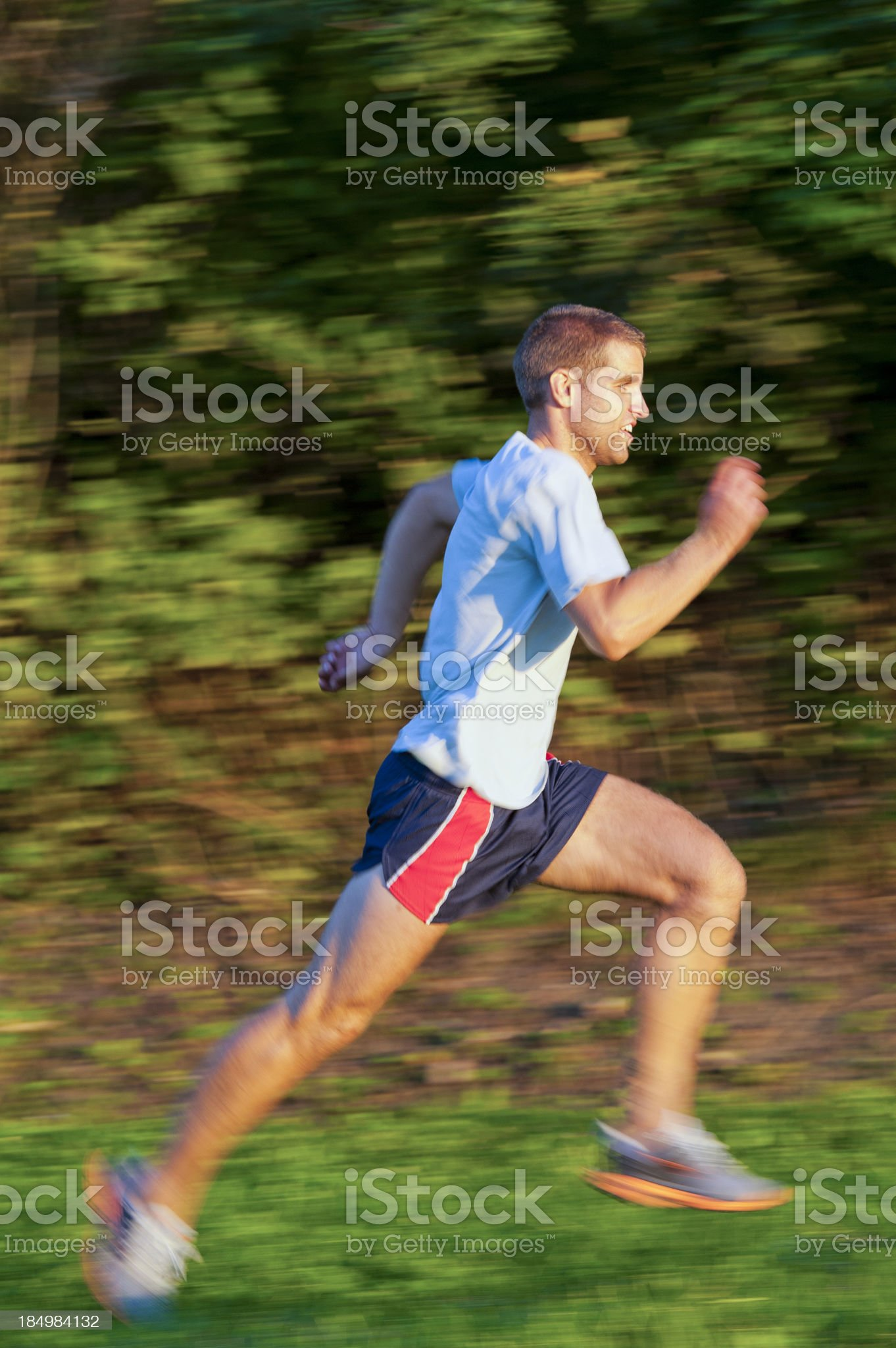 Running in the park royalty-free stock photo