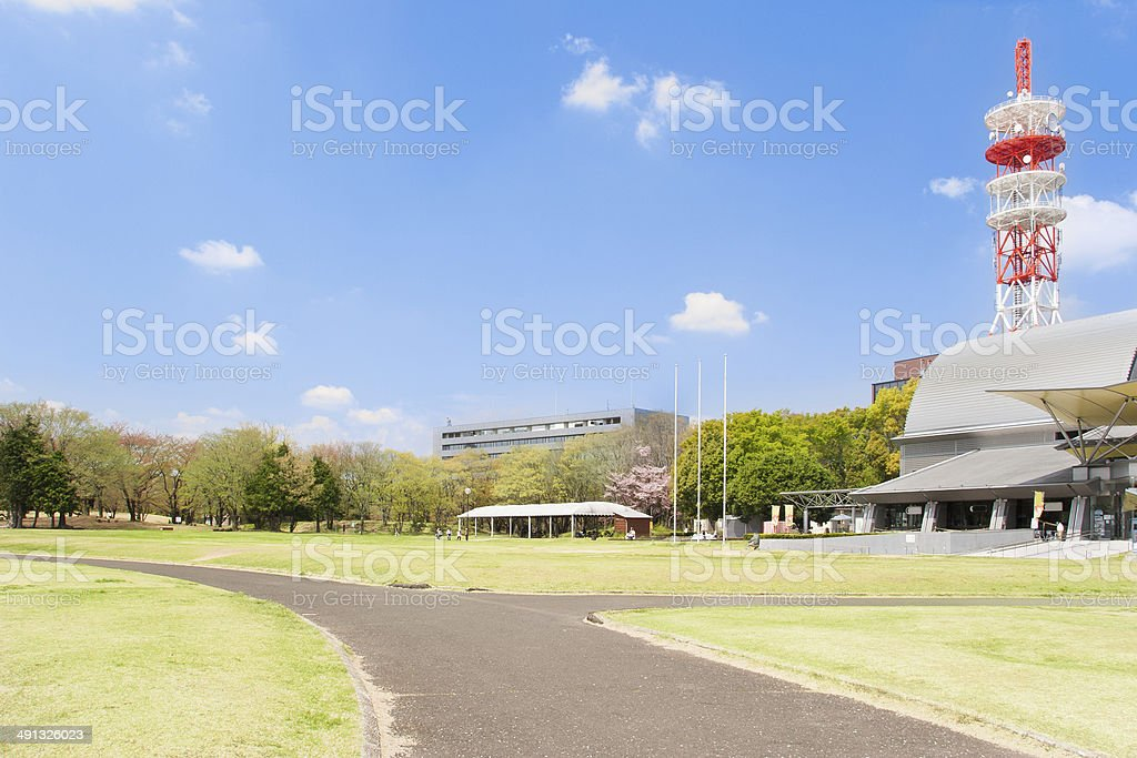 Running lane in a park. stock photo