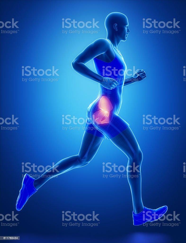 HIP - running man leg scan in blue stock photo