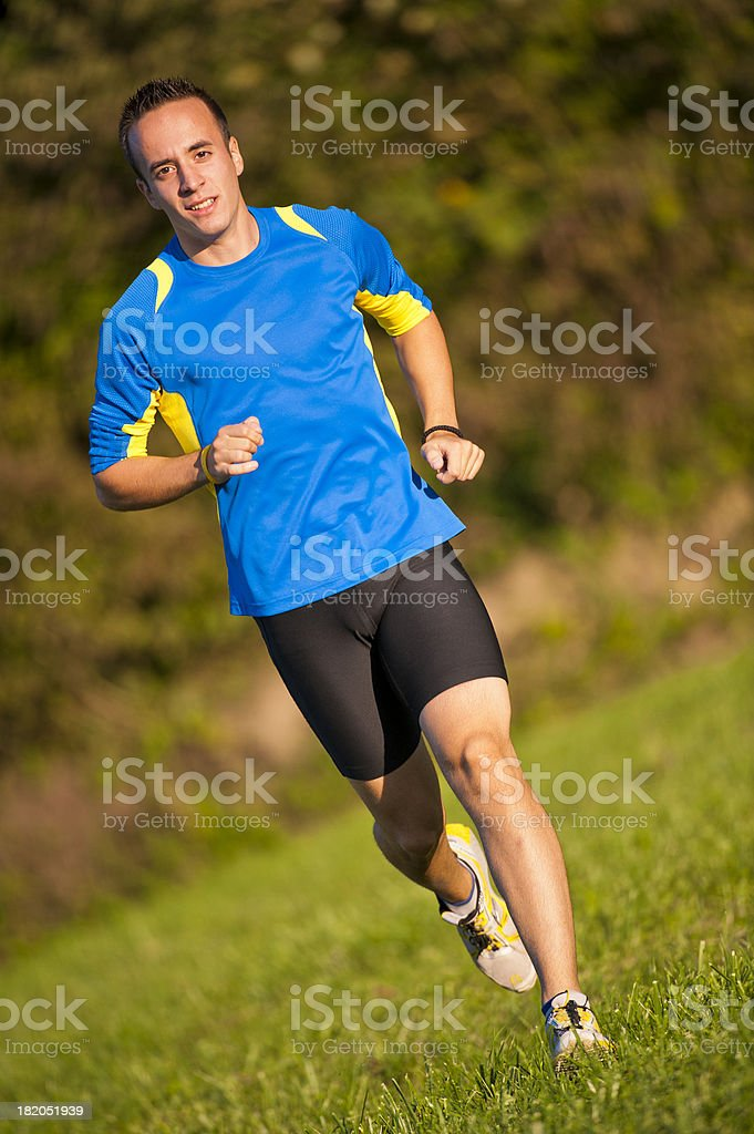 Running on the meadow royalty-free stock photo