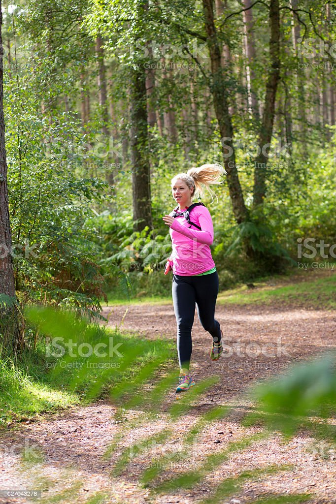 Running Through the Forest stock photo