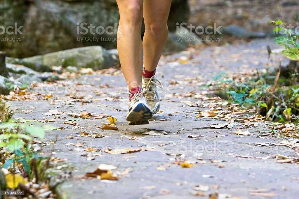 Running through the woods royalty-free stock photo