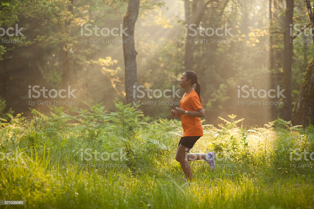 Running through woods in the morning stock photo