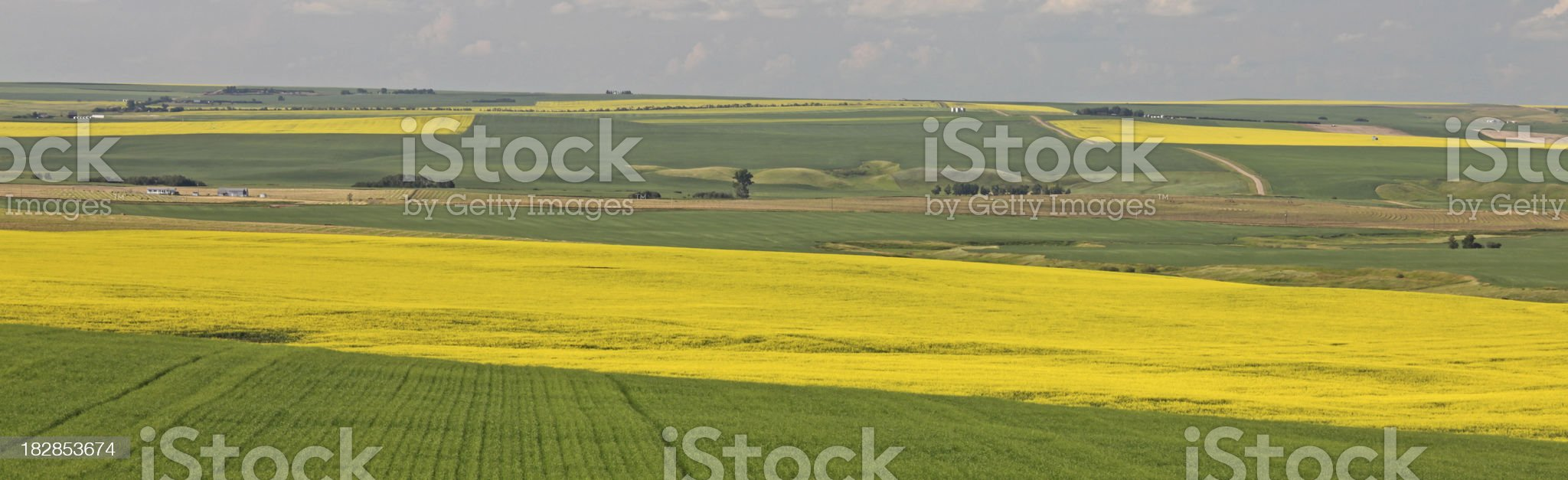 Rural Alberta Panorama royalty-free stock photo
