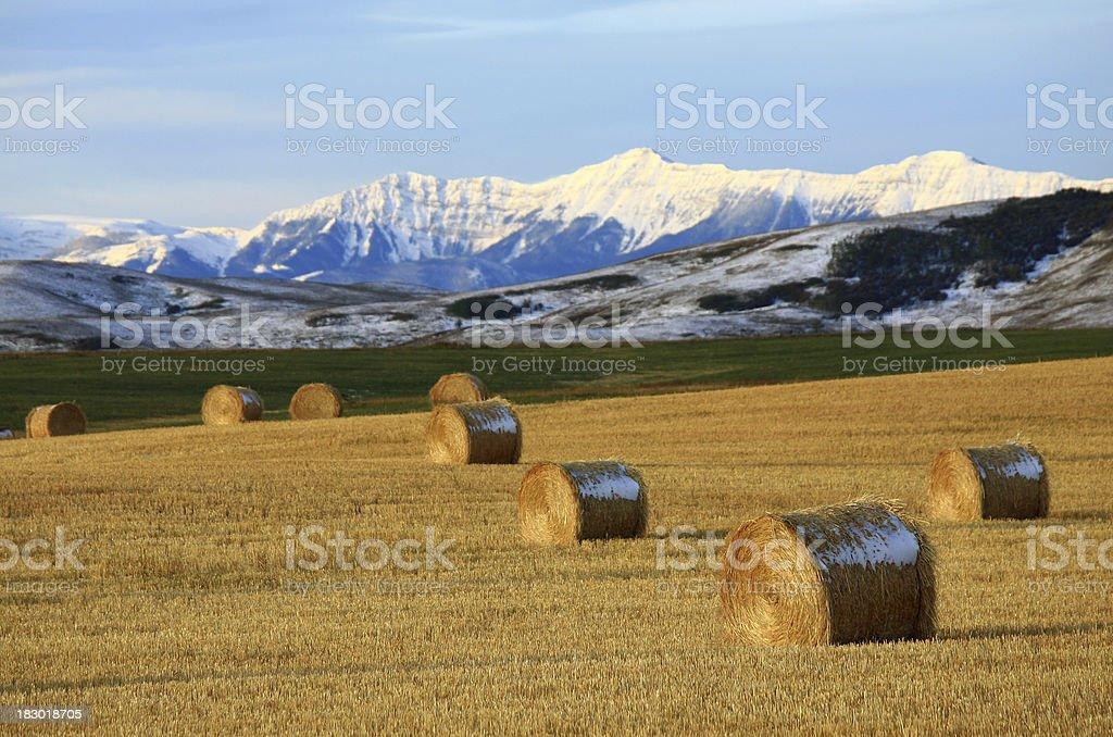 Rural Alberta stock photo