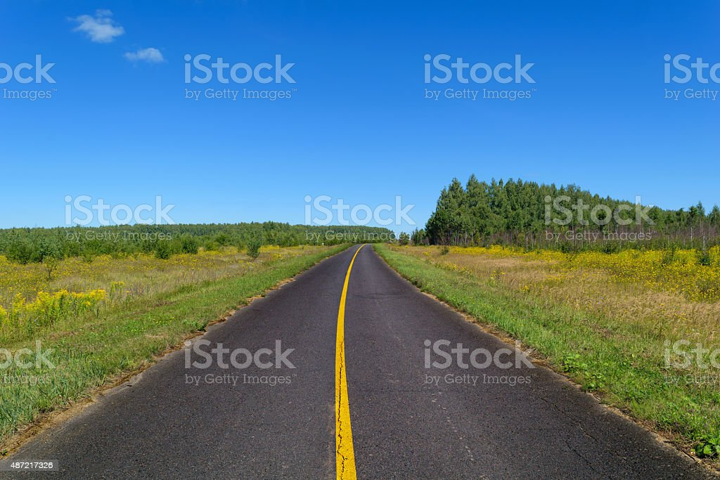 Rural asphalt road with markings that passing through the meadow stock photo