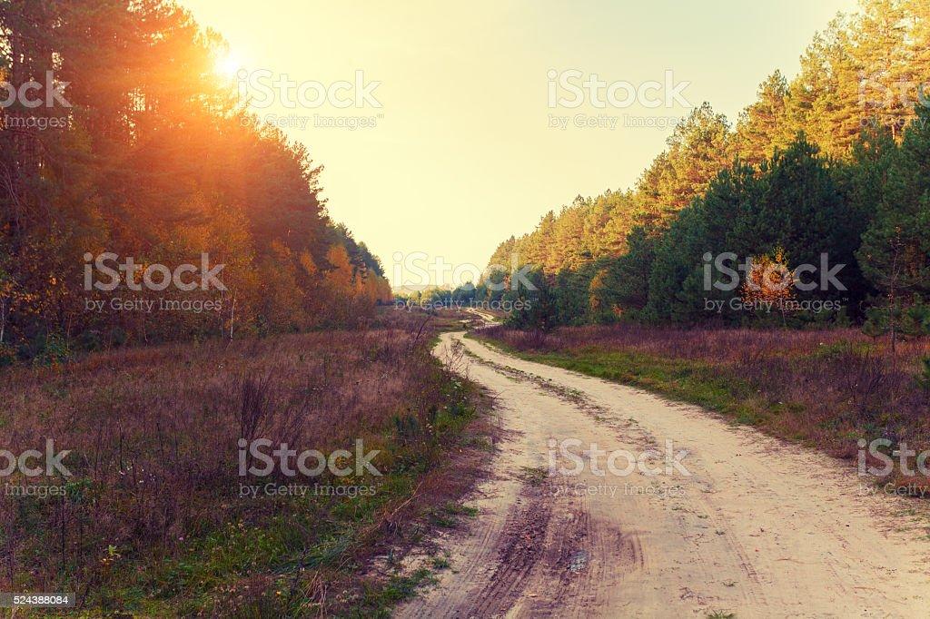 Rural autumn landscape, dirt road stock photo