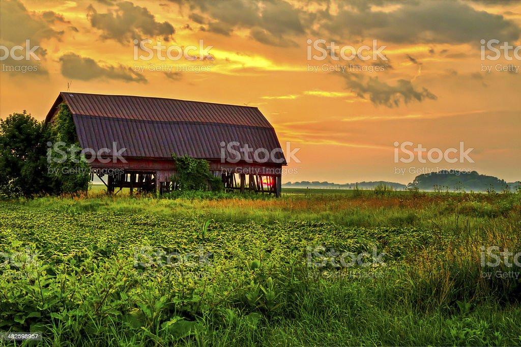 Rural Beauty stock photo