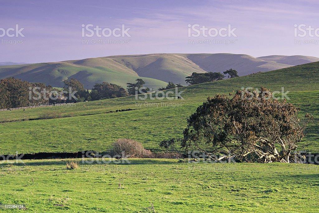 Rural California royalty-free stock photo