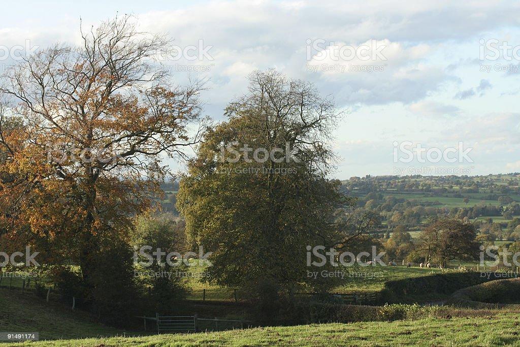 rural Cheshire royalty-free stock photo