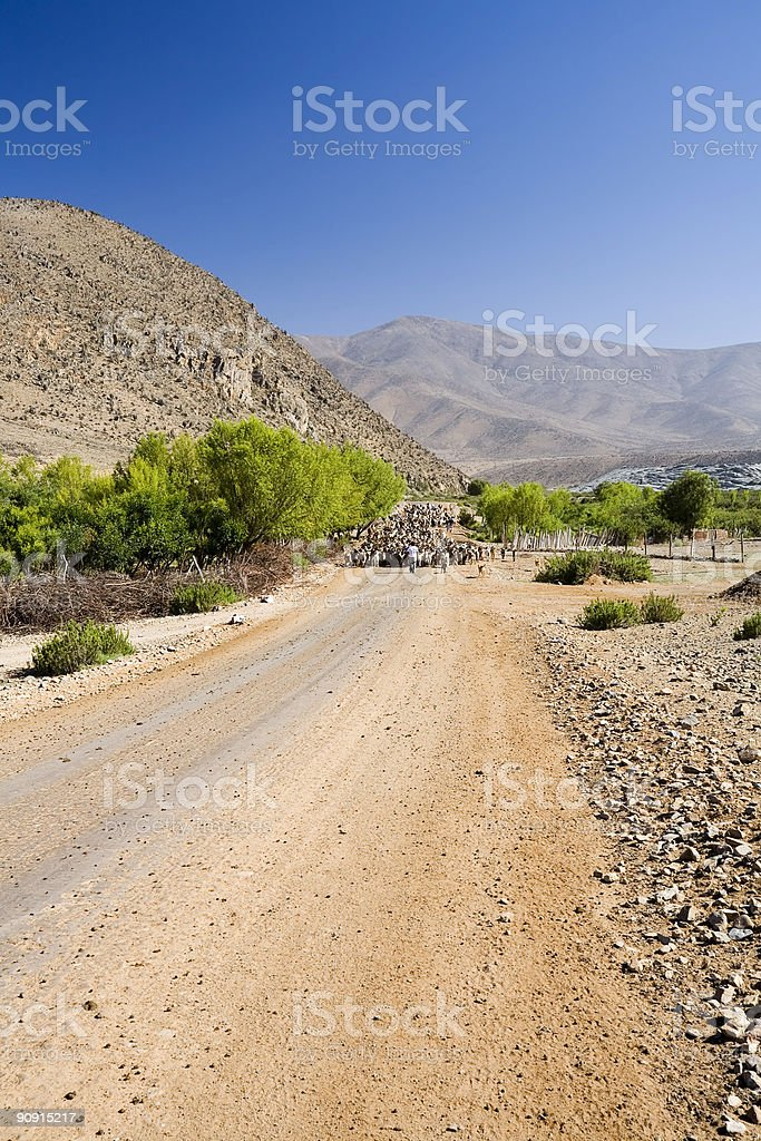 Rural Chile royalty-free stock photo