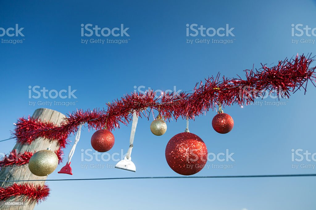 Rural Christmas fence in summer stock photo