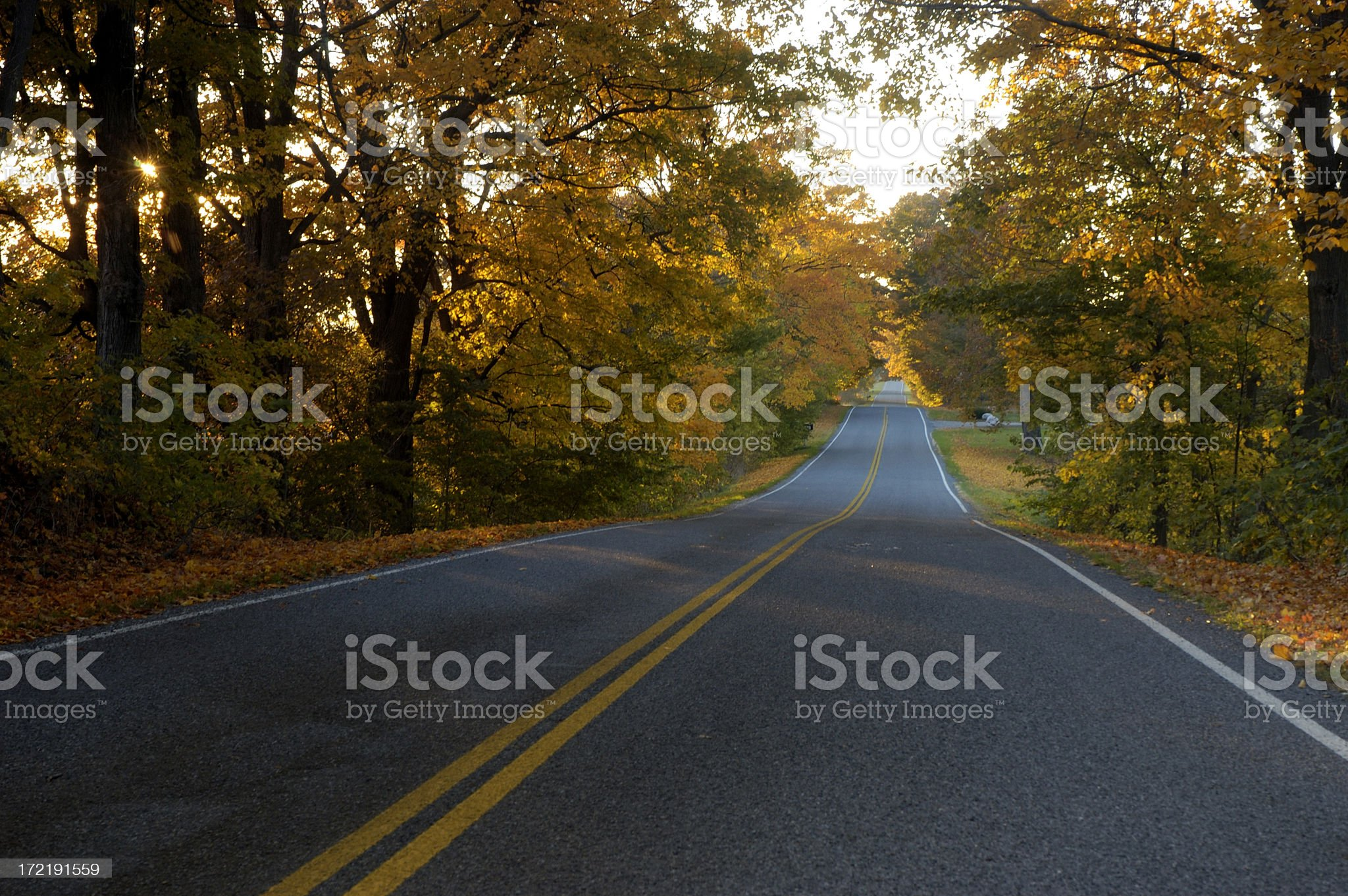 Rural country road with fall colors royalty-free stock photo
