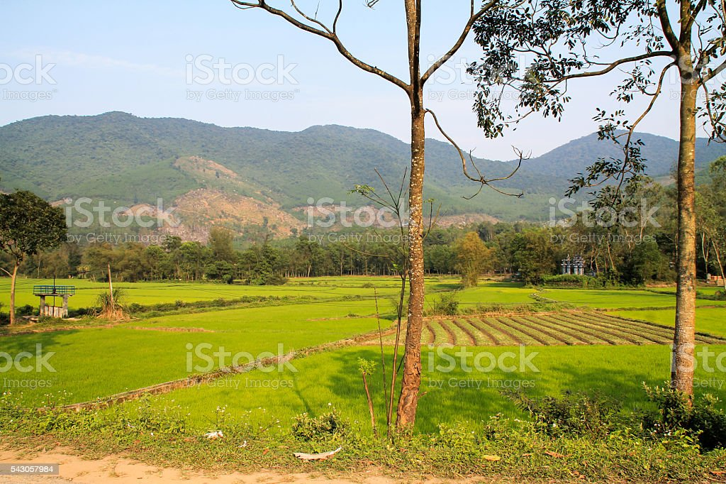 Rural countryside in Vietnam with rice fields photo libre de droits