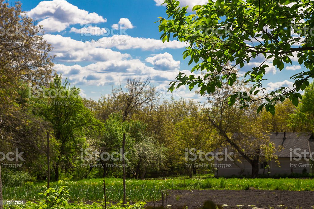 Rural croft overlooking the garden in spring stock photo