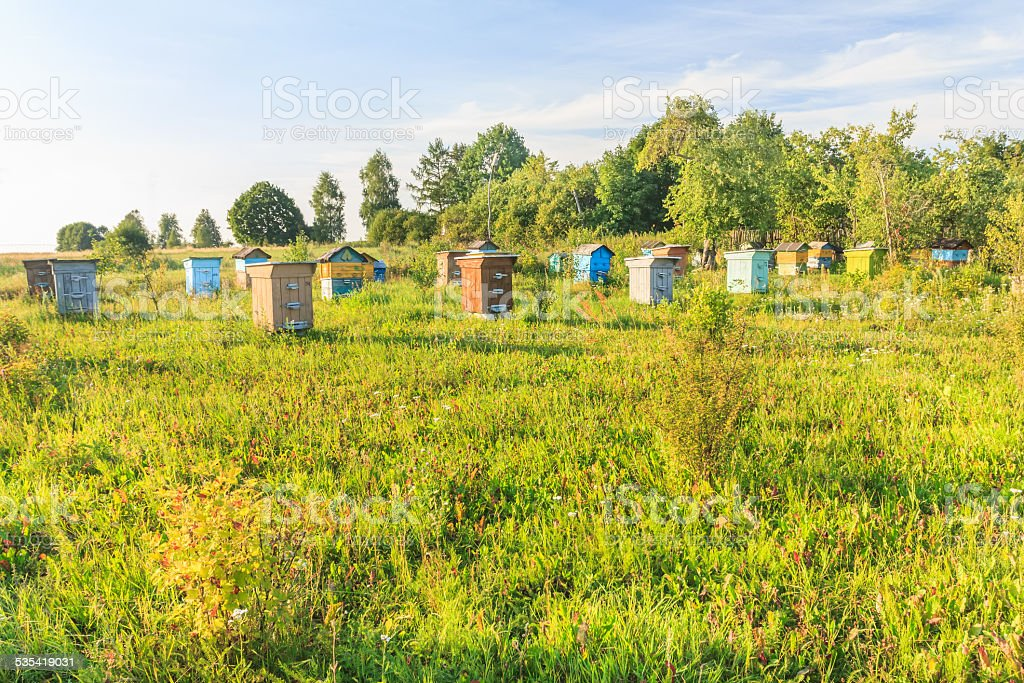 Rural farm apiary with multicolor beehouses stock photo