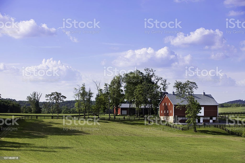 Rural farm house in the middle of a field stock photo