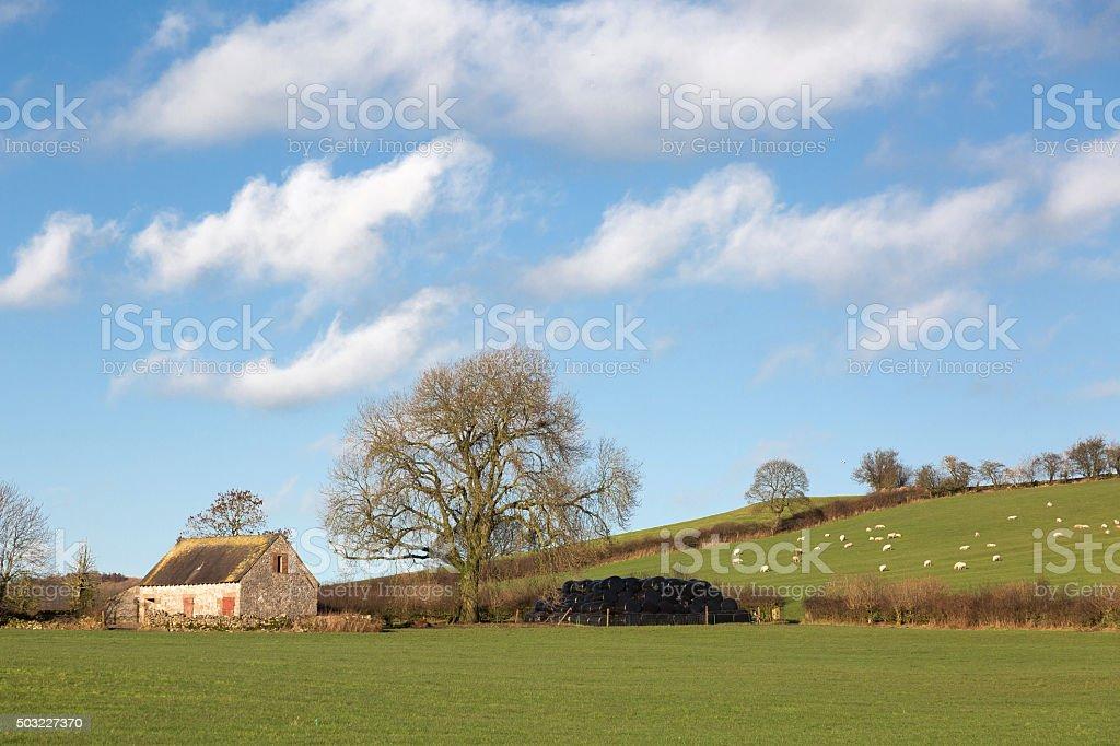 Rural farm scene - UK stock photo