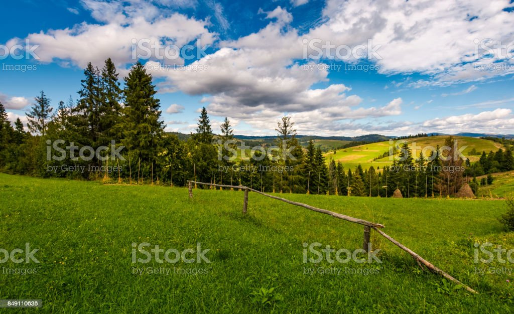 rural fields on hills in mountains near forest stock photo