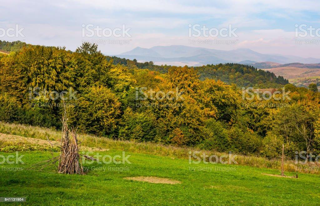 rural grassy fields on Carpathian hills stock photo