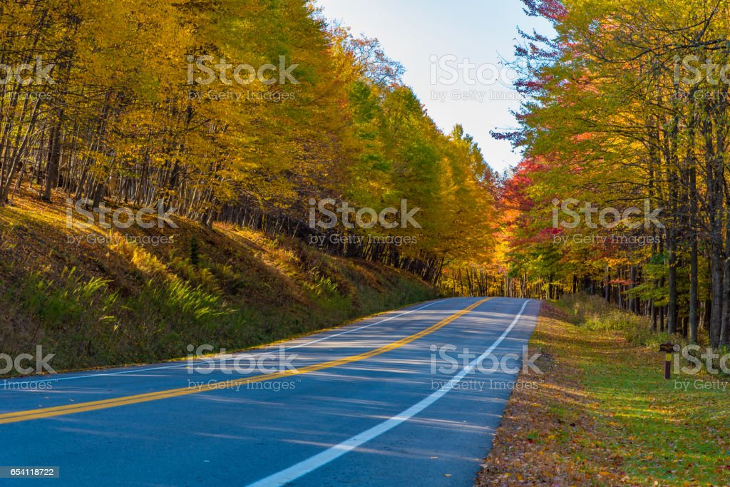 A rural highway through a forest in the fall stock photo
