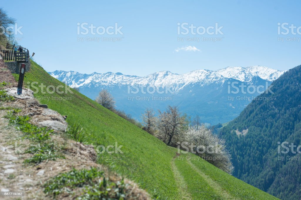 Rural Hiking way in Austria stock photo