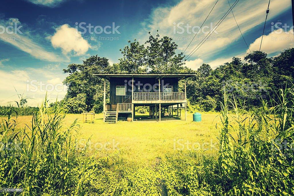 Rural House in the Jungle of Borneo stock photo