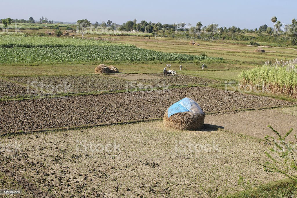Rural India stock photo